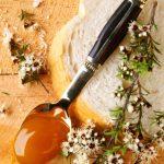 マヌカハニーと普通の蜂蜜、食べるならどっち?