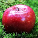 リンゴ リンゴエキス