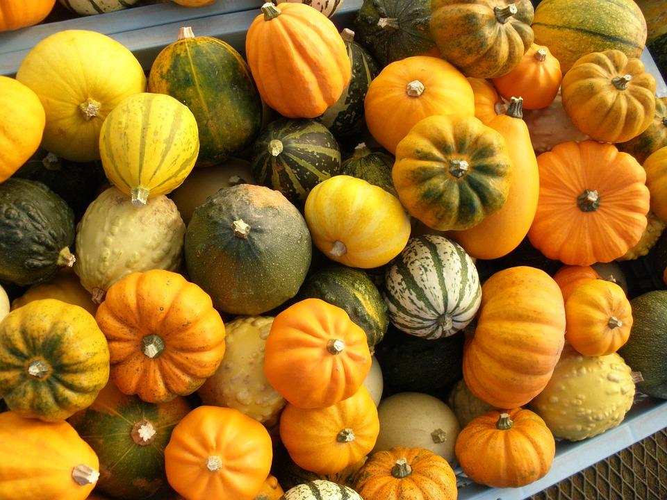 かぼちゃ βカロテン